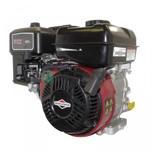 Двигатель Briggs&Stratton 550 Series OHV 0831