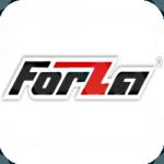 Двигатель Forza