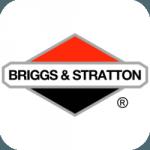 Запчасти для двигателя Briggs&Stratton