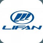 Запчасти для двигателя Lifan