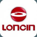 Запчасти для двигателя Loncin