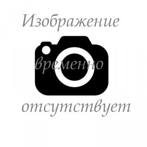 Шайба 650200007 для мотоблока Салют