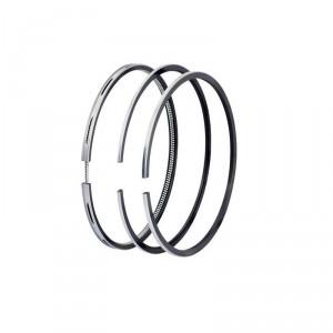 Поршневые кольца для двигателя Субару EX-17/21 (Комплект)